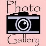 Foto galeri ikoon